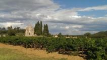 <h5>August: Jonathan in der Provence</h5><p>Dolce far niente aus südfranzösisch</p>