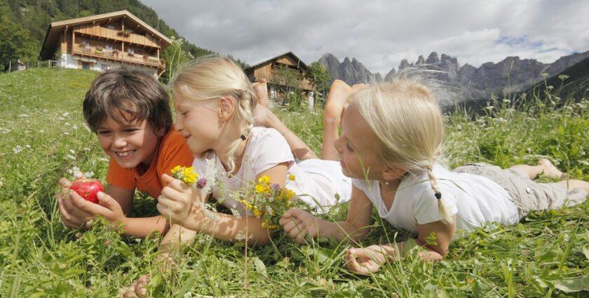 Ein Hahn auf Erfolgskurs – Ferien auf dem (Design-)Bauernhof