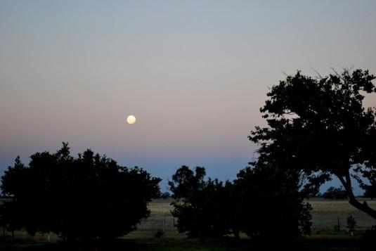 Farmstay: Abendliche Ausblicke