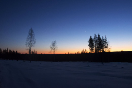 Rovaniemi_Husky_Tour06