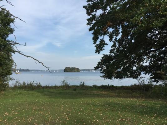 Blick von der Insel auf die Havel