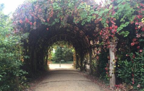 Pfaueninsel – eine Reise in die Zeit der preußischen Könige