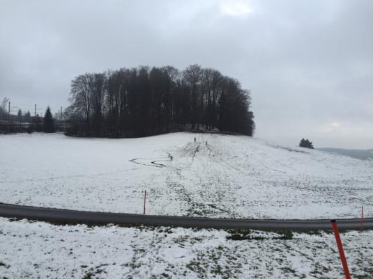 Schlitteln auf dem Uetliberg bei Ringlikon - ok hier braucht's noch mehr Schnee