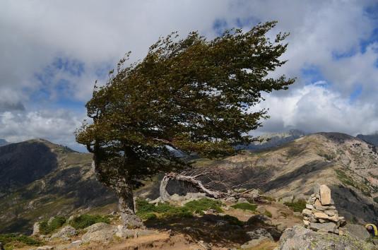 In den Hügeln von Korsika