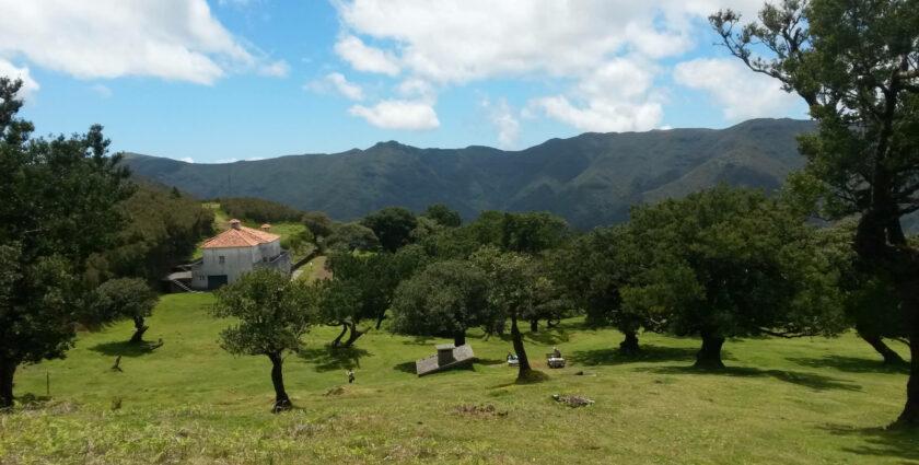 Meine Lieblingswanderung auf Madeira