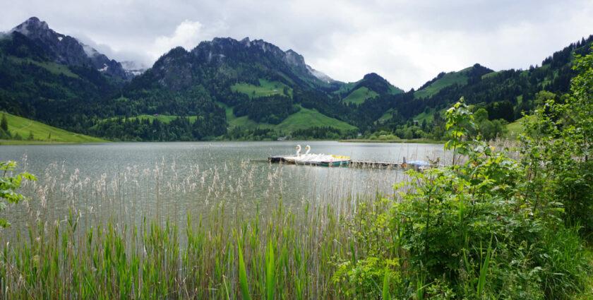 Schwingen, wandern und entspannen in Schwarzsee