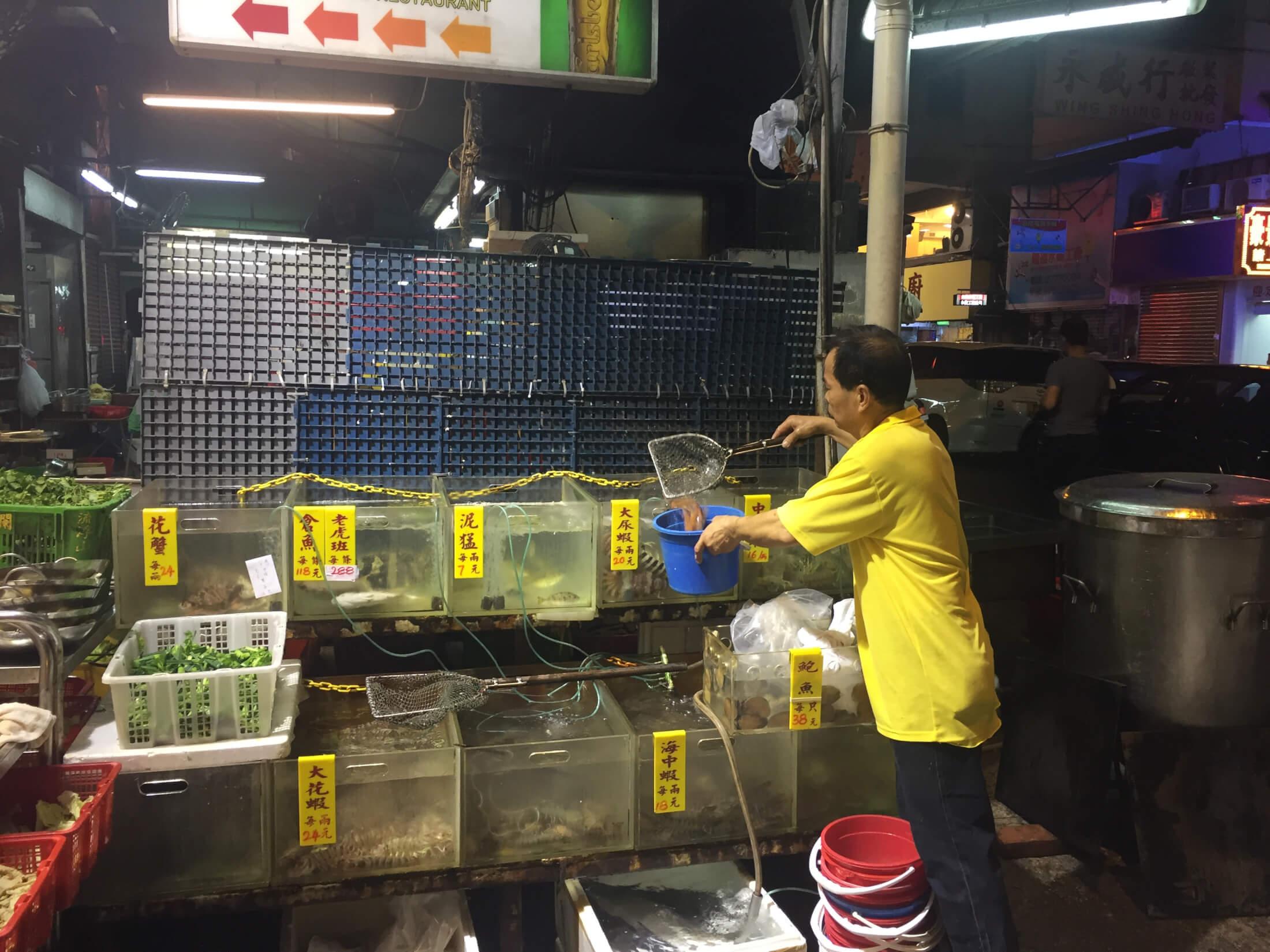 hongkong aquarium fisch frisch markt