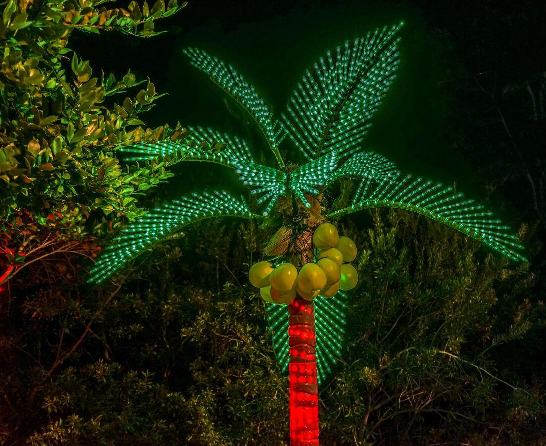 indien weihnachten palme