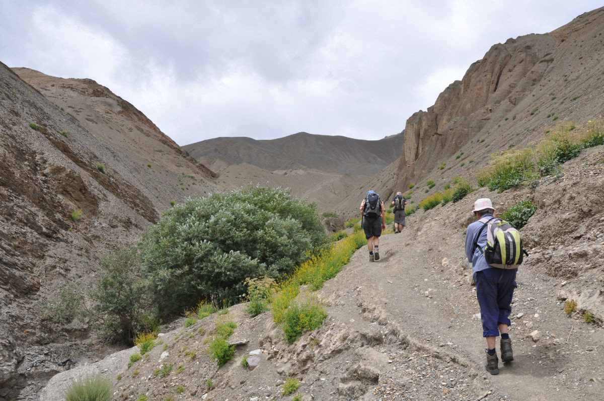 lamayuru tibet kashmir jammu indien wandern gebirge anstieg natur Ladakh