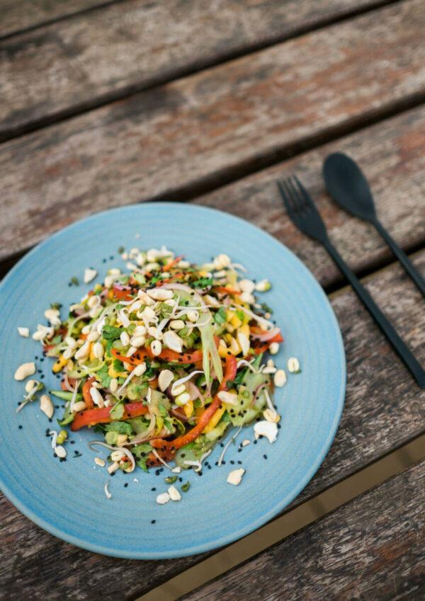 asiatischer-mango-sellerie-salat-zwei pfannen-kochen-camper