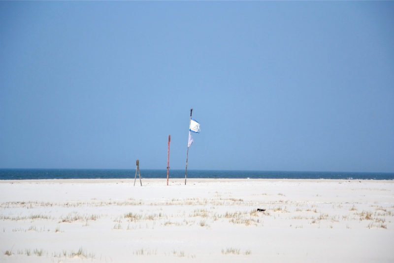 Amrum Strand Sand