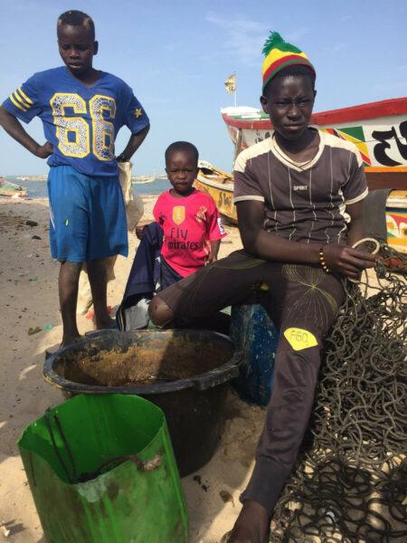 Senegal Fischer