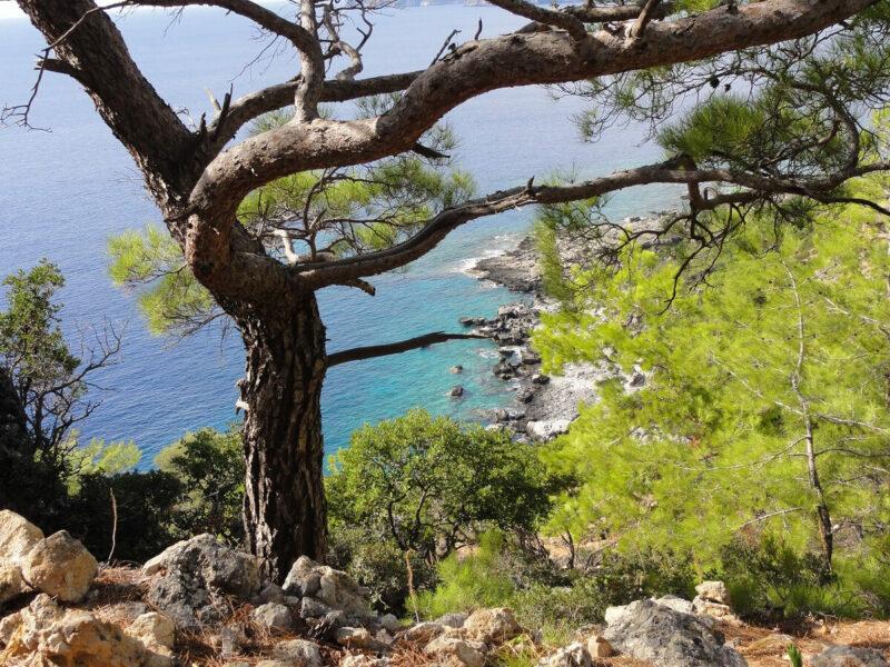 Wanderung Kreta Küste