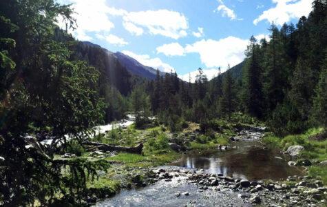 Familienwanderung auf dem Bärenweg in Scuol