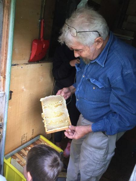 Honig Imker Scuol Bienen