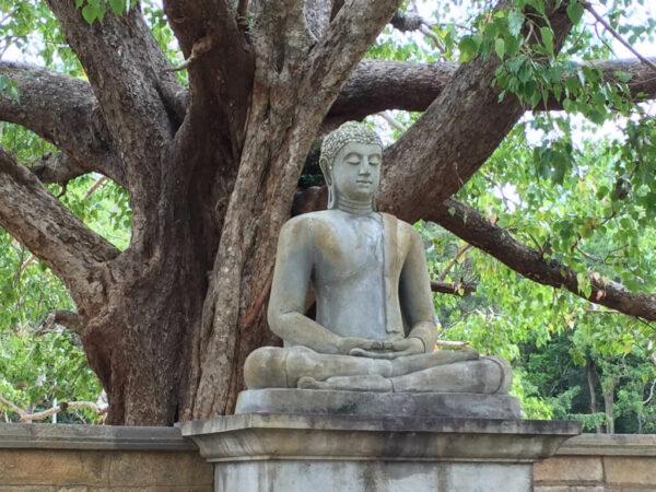 Sri-Lanka-Reise-Statuen-Buddha-Sehenswürdigkeiten