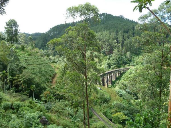 Sri-Lanka-Rundreise-Reise-Landschaft