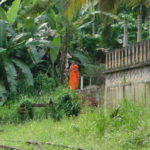 Sri-Lanka-Mönch-Sehenswürdigkeiten-Kultur-Religion