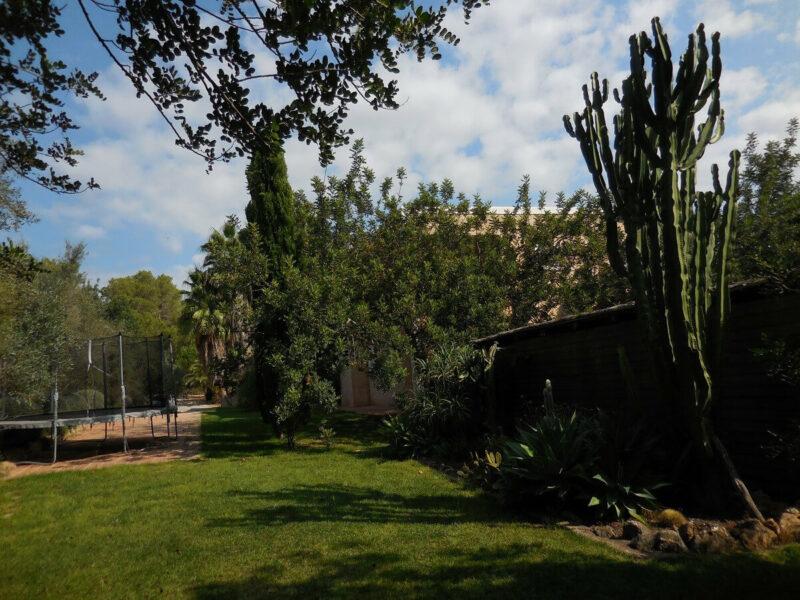 Garten Holymama Yoga Ibiza