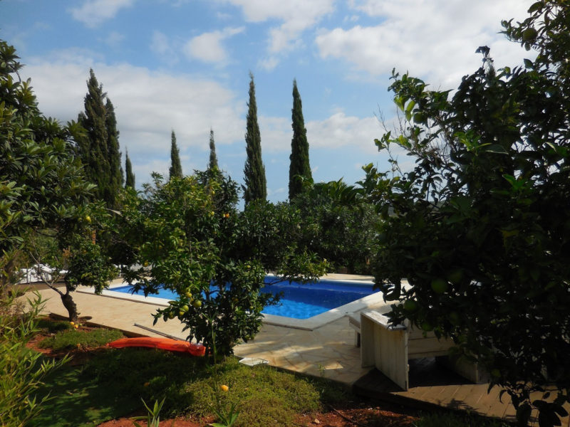 Pool Holymama Yoga Ibiza