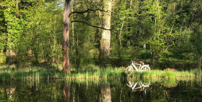 Eine grosse Liebe – mein neues E-Bike und ich