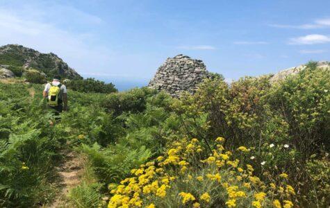 Einmal quer über die Insel Elba