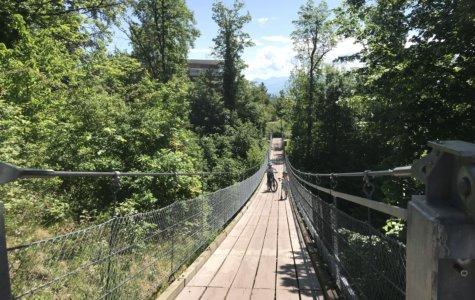 Geheimtipp am Zürichsee: Die schwankende Hängebrücke von Meilen