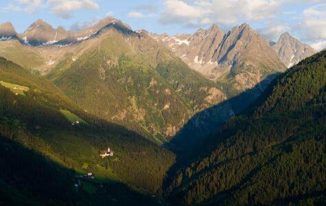 Kraftquelle Natur - Ein Spaziergang im Tiroler Wald