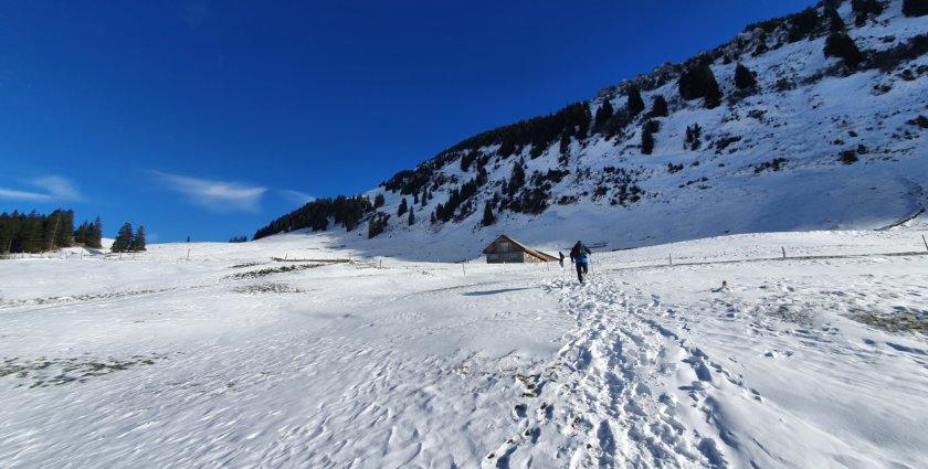 Winterwandern mit Aussicht im Toggenburg
