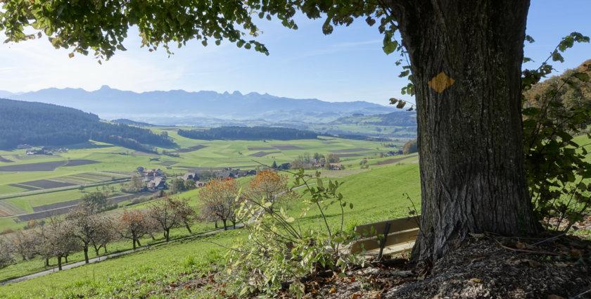 Emmental – Schönste «Berner Platte» direkt vor der Haustüre