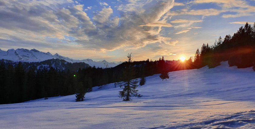 Naturschutzgebiet Ibergeregg: Schneeschuh-Genuss für Einsteiger mit Ausdauer